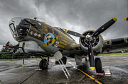Vintage Aircraft Photos - B17 Bomber Portrait by Puget  Exposure