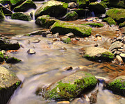Babbling Metal Prints - Babbling Brook Metal Print by Robert Harmon