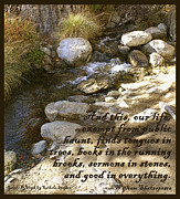 Babbling Metal Prints - Babbling Brook William Shakespeare Quote Metal Print by Barbara Snyder