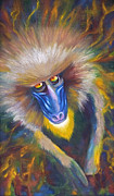 Jungle Animals Paintings - Baboon by Rene