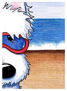 Baby Big Kahuna Print by Kim Niles