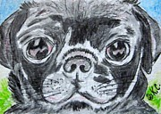 Kathy Marrs Chandler - Baby Black Pug