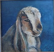 Sheep Art - Baby Goat Erika by Andrea Flint Lapins