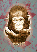 Ape Mixed Media Posters - Baby Monkey - stylised drawing art poster Poster by Kim Wang