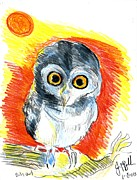 Cardstock Drawings Prints - Baby Owl  Print by Jon Baldwin  Art