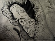 Owls Drawings - Baby Owls by J Michael Mann