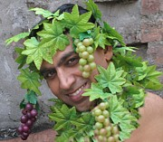 Bobby Dar - Bacchus God of wine
