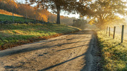 Country Dirt Roads Photo Posters - Back Road Morning Poster by Bill  Wakeley