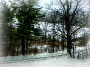 Winter Roads Originals - Back Roads of Winter by Jessica Grandall
