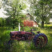Red Tractors Prints - Back to Nature Print by Debra and Dave Vanderlaan