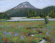 Mt. Bachelor Paintings - Back to Nature by Dorothy Jenson