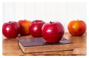 Classroom Metal Prints - Back to School Apples Metal Print by Edward Fielding