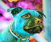 Puppies Digital Art - Back To The Dog Future by Kathy Budd