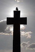 Sharon Kingston - Backlit Memorial Cross