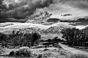 Mountains Prints - Backroads of Bishop Print by Cat Connor
