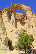 Rock Formations Prints - Backroads Utah Print by Mike McGlothlen