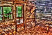 Cabin Window Digital Art Prints - Backwoods Prize Print by Dan Stone