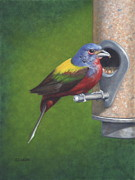 Birdseed Art - Backyard Bunting by Dee Dee  Whittle