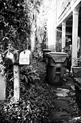 Yard Sale Prints - Backyard in Charleston Print by John Rizzuto