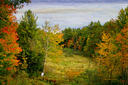 Deborah Benoit - Backyard In Vermont
