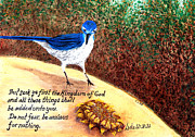 Scrub Jay Paintings - Backyard Jay by Catherine Saldana