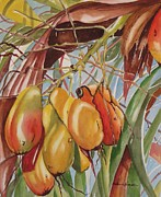 Mango Metal Prints - Backyard Mangoes Metal Print by Barbara Koepsell