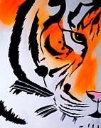 Robert Francis - Bad Tiger