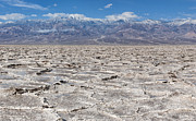 Sandra Bronstein Photo Posters - Badwater Basin - Death Valley Poster by Sandra Bronstein