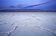 Early Photo Prints - Badwater Dawn Print by Darren  White