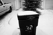 Sticking Out Prints - bag sticking out of litter waste bin covered in snow outside house in Saskatoon Saskatchewan Canada Print by Joe Fox