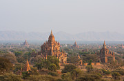 Bagan Photos - Bagan temples in Burma by Fototrav Print