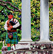 Bagpiper Prints - Bagpipes in Elmwood Print by Barbara Chichester