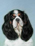 Animal Portraits Pastels - Bailey the Cavalier King Charles Spaniel by Lenore Gaudet
