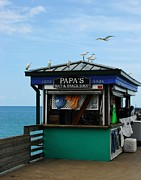 Seabirds Metal Prints - Bait And Snack Shop Metal Print by Mel Steinhauer