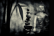Buddha Photo Metal Prints - Balance Metal Print by Tim Gainey