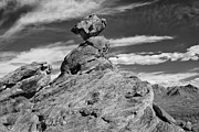 Balanced Rock Prints - Balanced Rock Print by Doug Oglesby