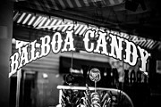 Balboa Island Posters - Balboa Candy Sign on Balboa Island Newport Beach Poster by Paul Velgos