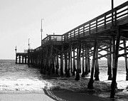 Carolyn Stagger Cokley Metal Prints - Balboa Pier Black N White Metal Print by Carolyn Stagger Cokley