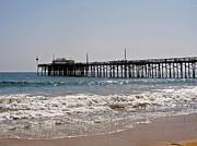 Carolyn Stagger Cokley - balboa pier2