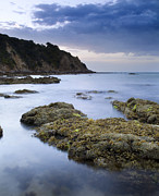 Balcombe Point Mount Martha Print by Tim Hester