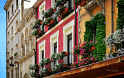 Stone Buildings Photos - Balconies of Leon by Mary Machare