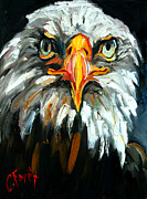 Bald Eagle Painting Framed Prints - Bald And Bald Framed Print by Carole Foret