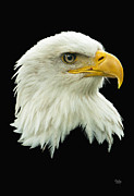 Bald Eagle-02 Print by Claude Dalley