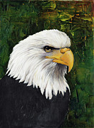 American Eagle Paintings - Bald Eagle by Darlene Fletcher
