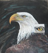 American Eagle Pastels Prints - Bald Eagle Print by Flo Hayes