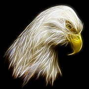 Isolated Digital Art Posters - Bald Eagle Fractal Poster by Adam Romanowicz
