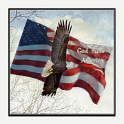 God Bless America Posters - Bald Eagle  God Bless America Poster by Debbie Portwood