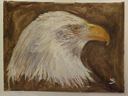 American Eagle Paintings - Bald Eagle by Nicola Brown