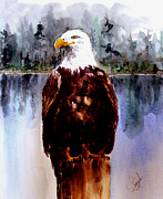 Travel Photography Painting Prints - Bald Eagle Print by Steven Ponsford