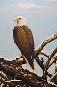 Winterscape Painting Originals - Bald Eagle watch by Anne Marie Spears